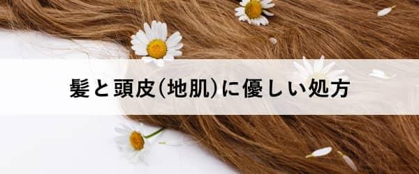 白髪染めの選び方3:髪と頭皮(地肌)に優しい処方
